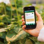 Eine Personh hat ein Smartphone in der Hand. Im Hintergrund sind Pflanzen.
