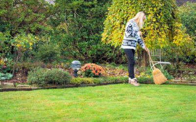 Letzte Arbeiten im Herbstgarten: Das dürfen Sie nicht vergessen