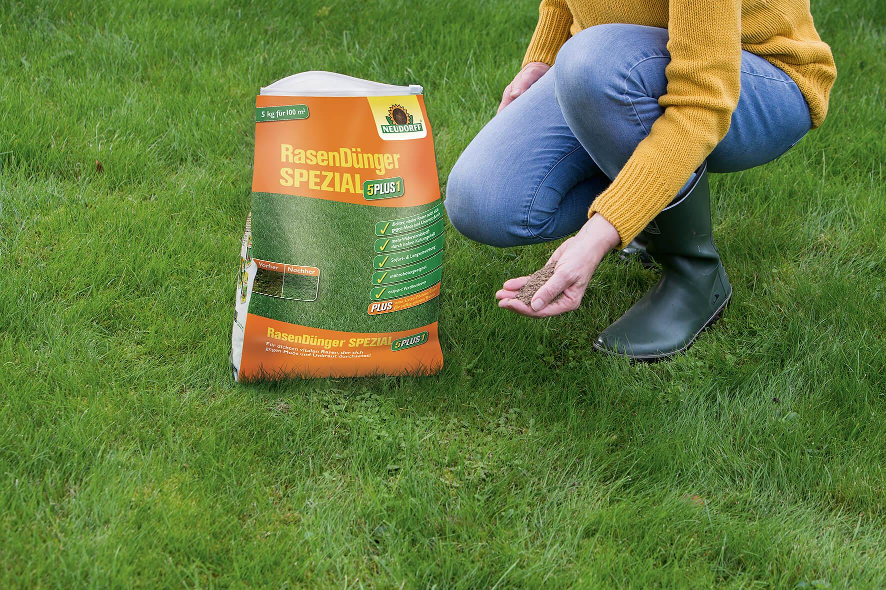 So erhalten Sie einen sattgrünen Rasen