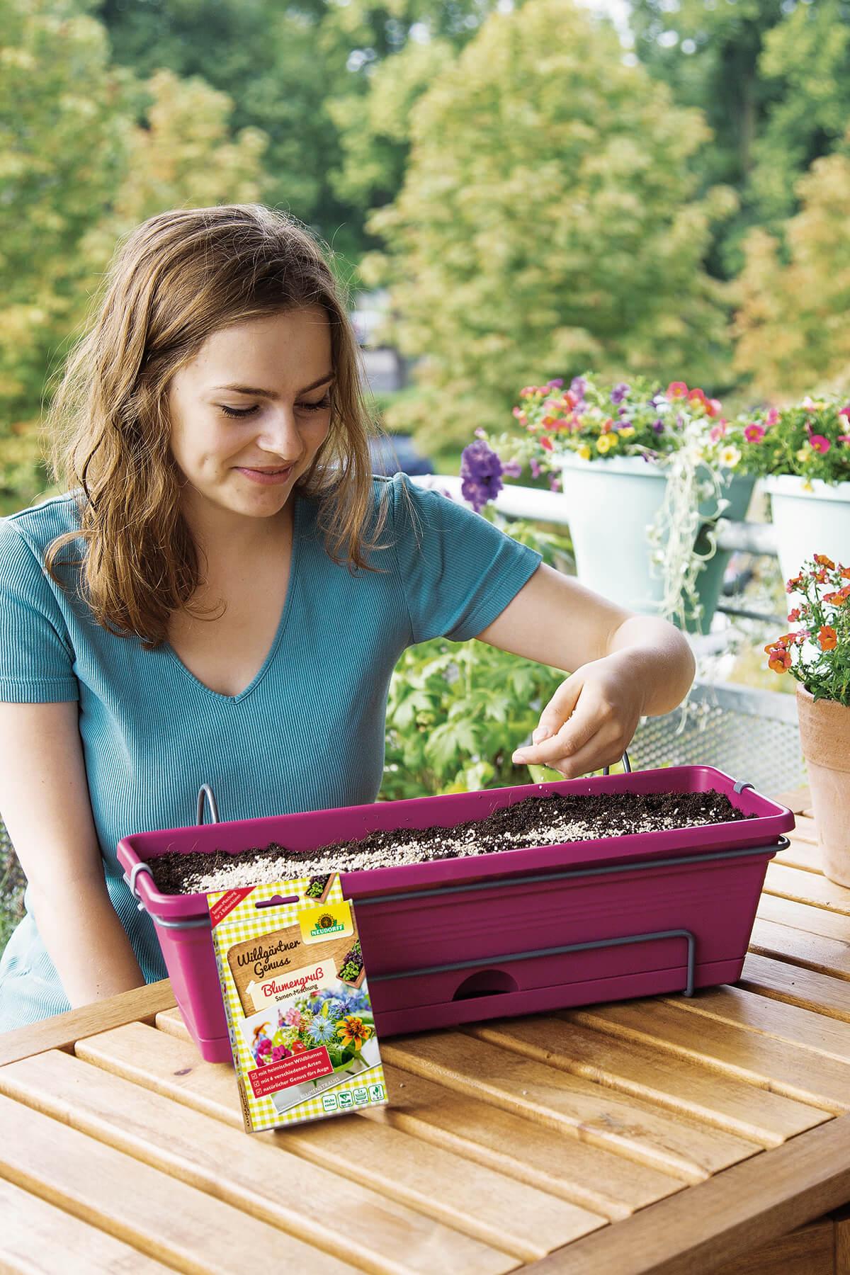 So pflanzen Sie Kräuter richtig an