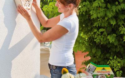 Wildbienen-Nisthilfe: Naturschutz mit Wow-Effekt